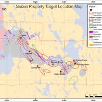 Figure 1: Goose property - Exploration target plan